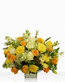 arrangements-Crowning-Visnaga