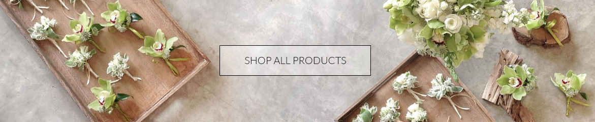 banner_shop-all-products
