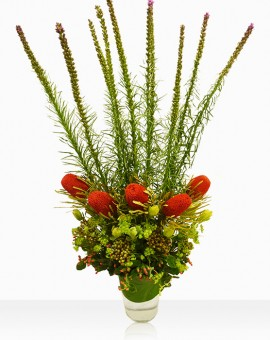 tall-arrangements-Callilepis