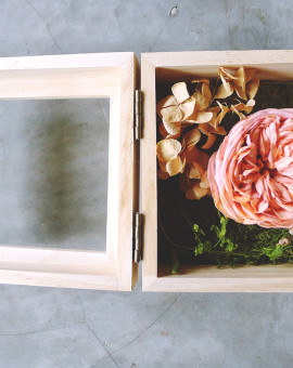 preserved_rose_07b