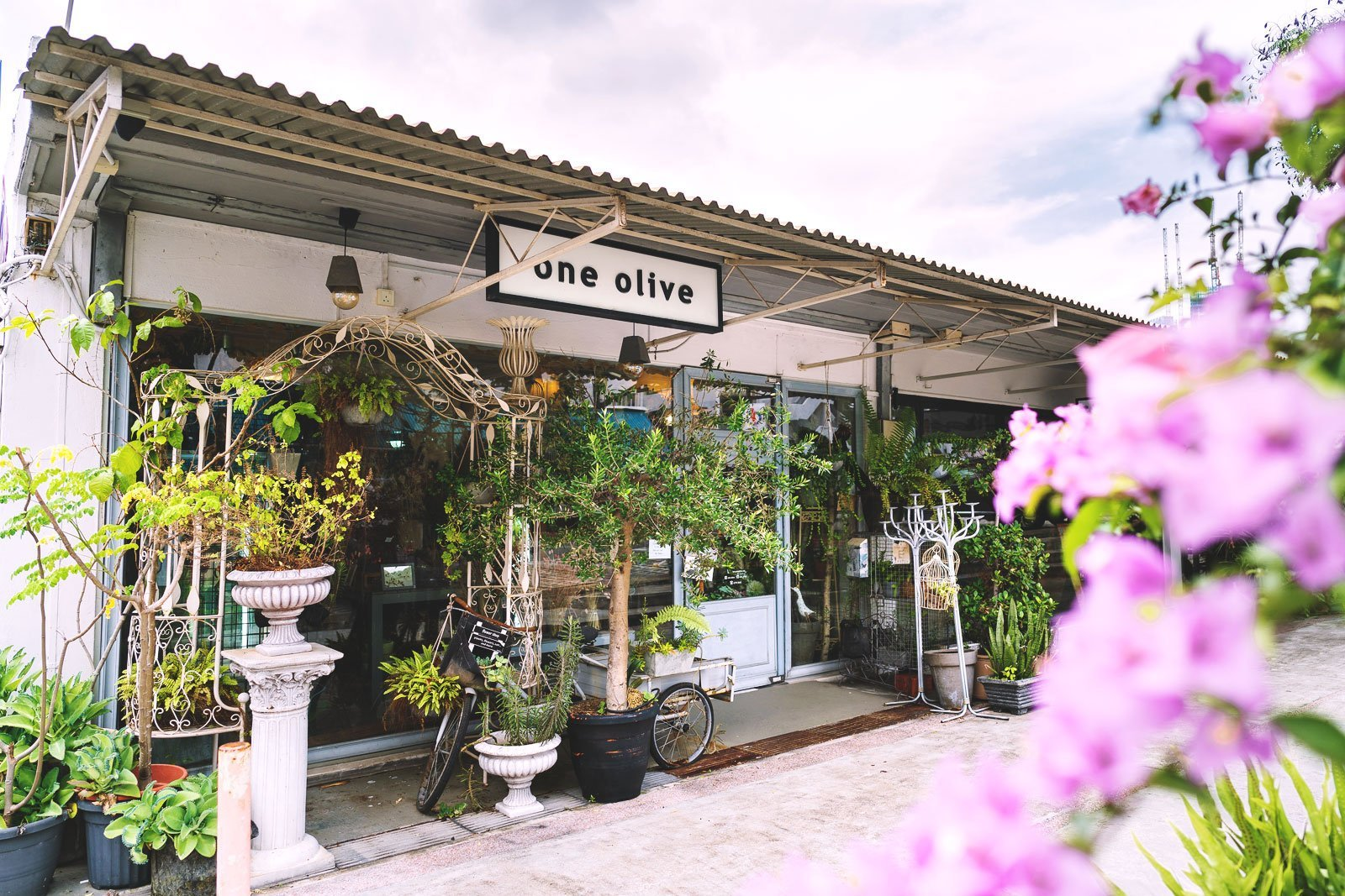 One Olive Shop Front